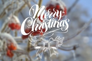 Merry-Christmas-on-blur-winter-photo-background-000053527672_Large